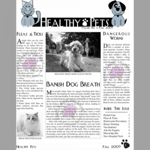 newsletter design